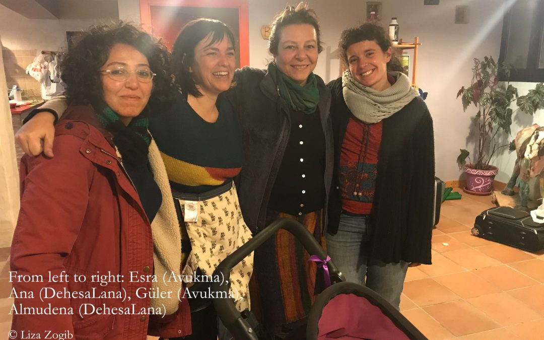 Reflections from the exchange between the DehesaLana, Spain, and Avukma, Turkey – By Liza Zogib