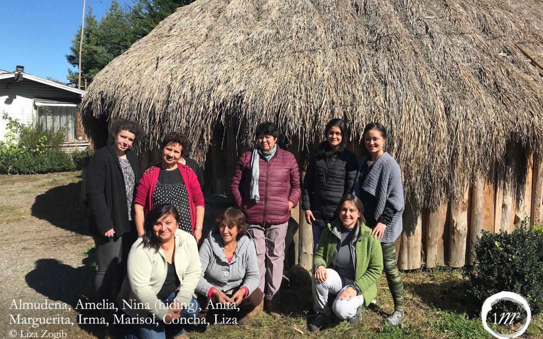 Reflections on the exchange between DehesaLana, Spain, and Wallontu Witral, Chile – By Liza Zogib