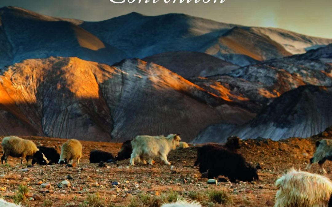New Report: Mobile Pastoralism and the World Heritage Convention