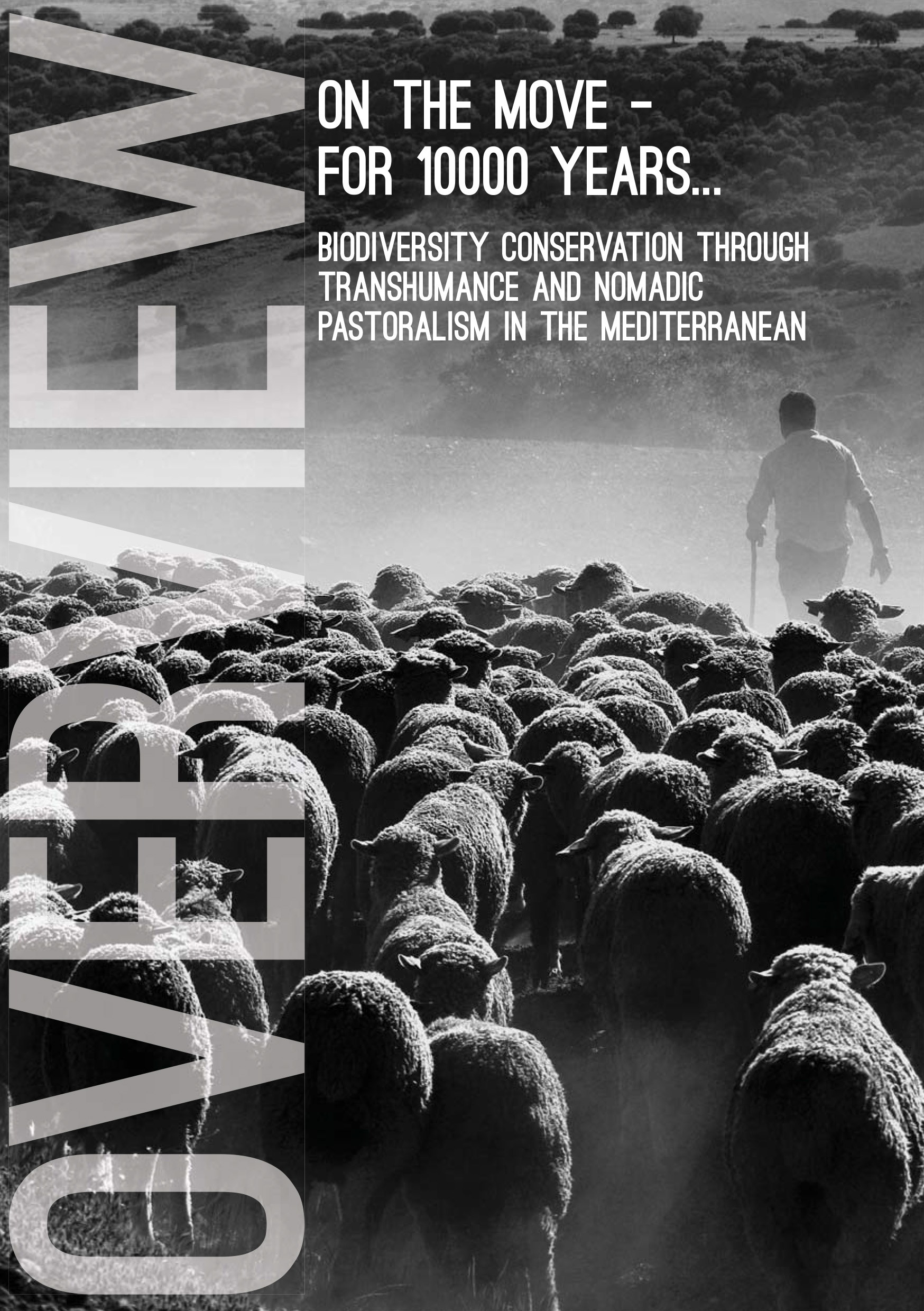 On the move - for 10000 years... Biodiversity Conservation through Transhumance and Nomadic Pastoralism in the Mediterranean