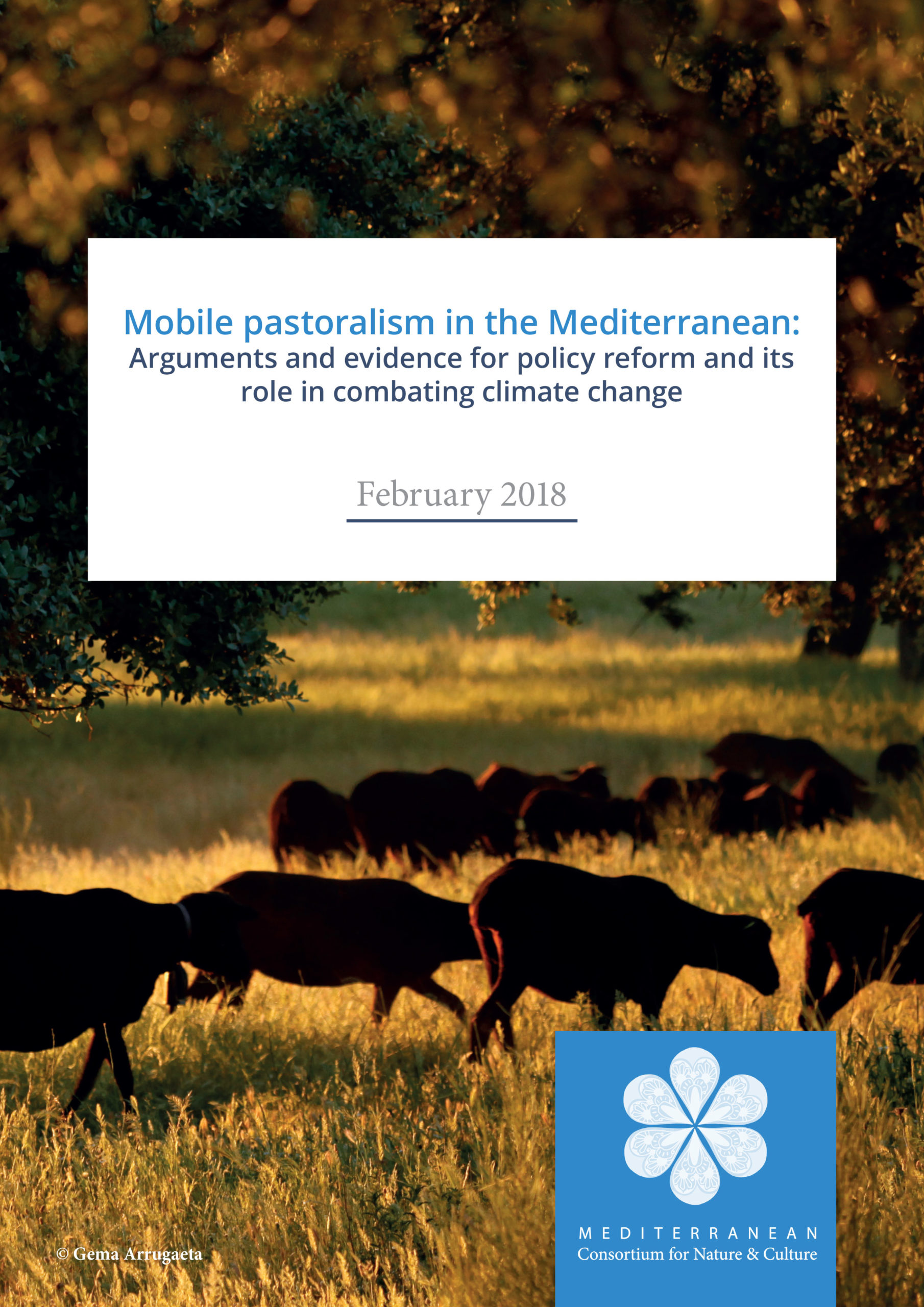 Mobile Pastoralism in the Mediterranean