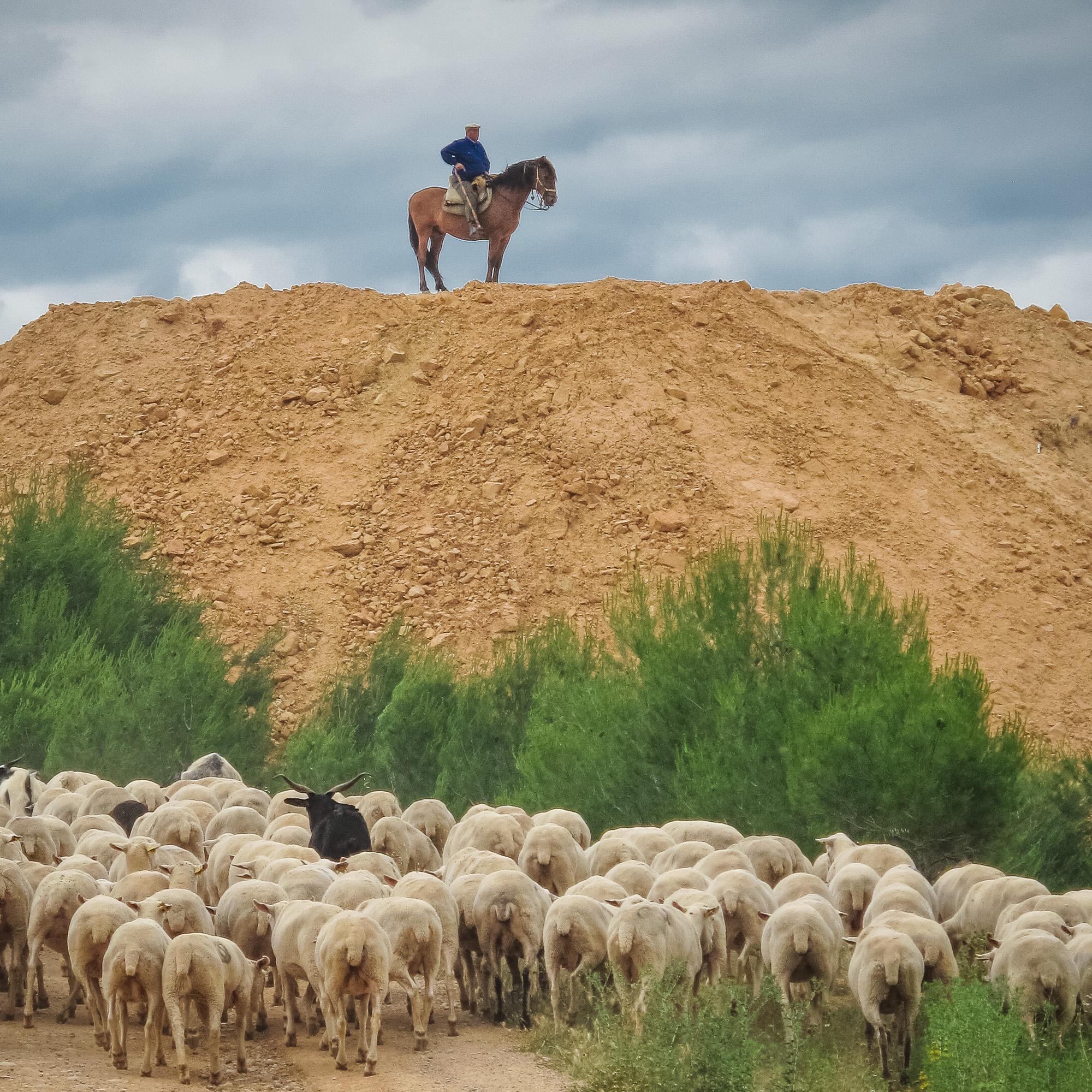 Spirituality of pastoralism